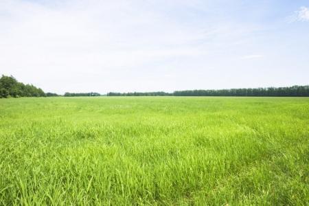 Где в РК чаще всего дают взятки за получение земли